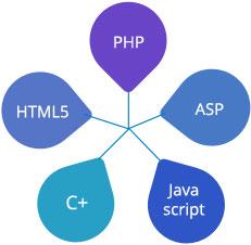 کدام زبان ها برای طراحی سایت