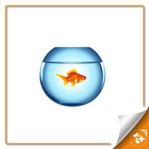 وکتور تنگ ماهی قرمز